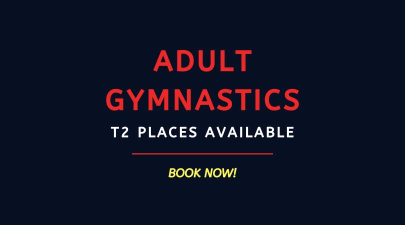 BOOK NOW: Adult Gymnastics Term 2 19/20